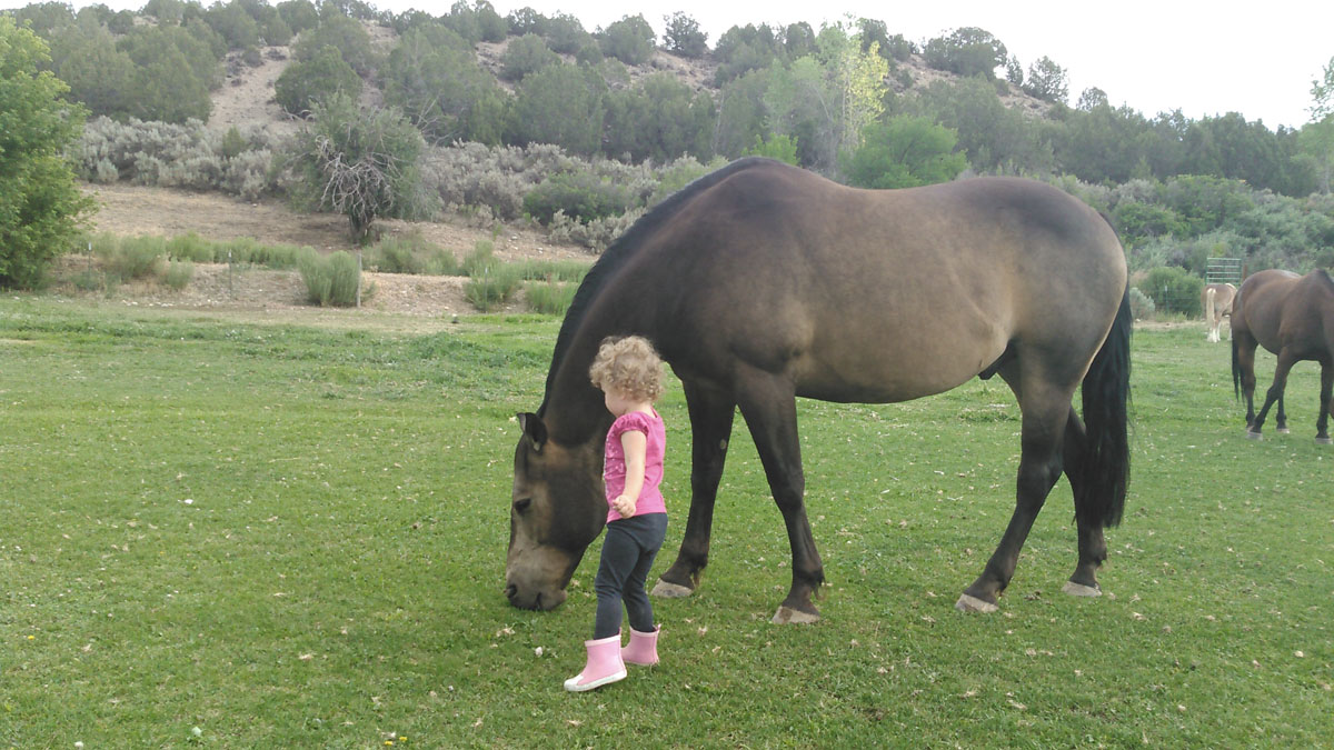 youth equine therapy